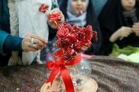 یلدای مهدوی در گل نرگس مسجد مقدس جمکران