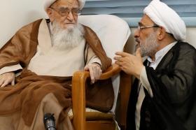 دیدار تولیت های مسجد کوفه و جمکران با آیت الله العظمی صافی گلپایگانی