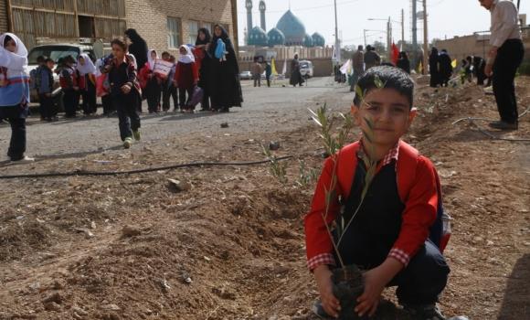 درخت کاری در اطراف مسجد مقدس جمکران