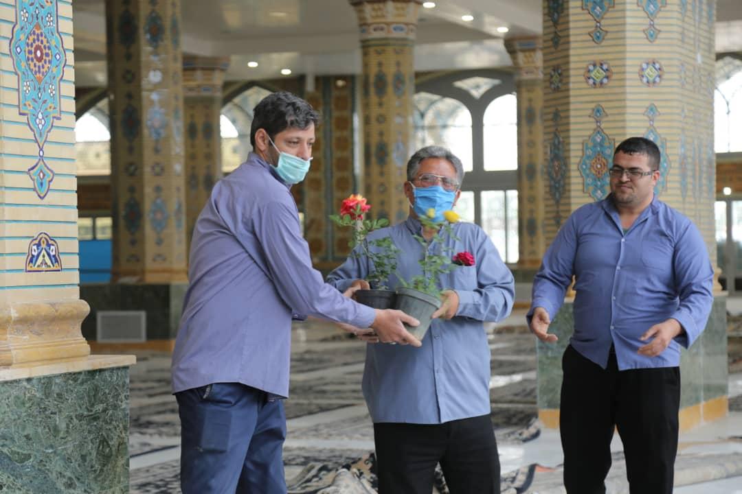 تلاش خادمان مسجد مقدس جمکران برای میزبانی از زائران نیمه شعبان